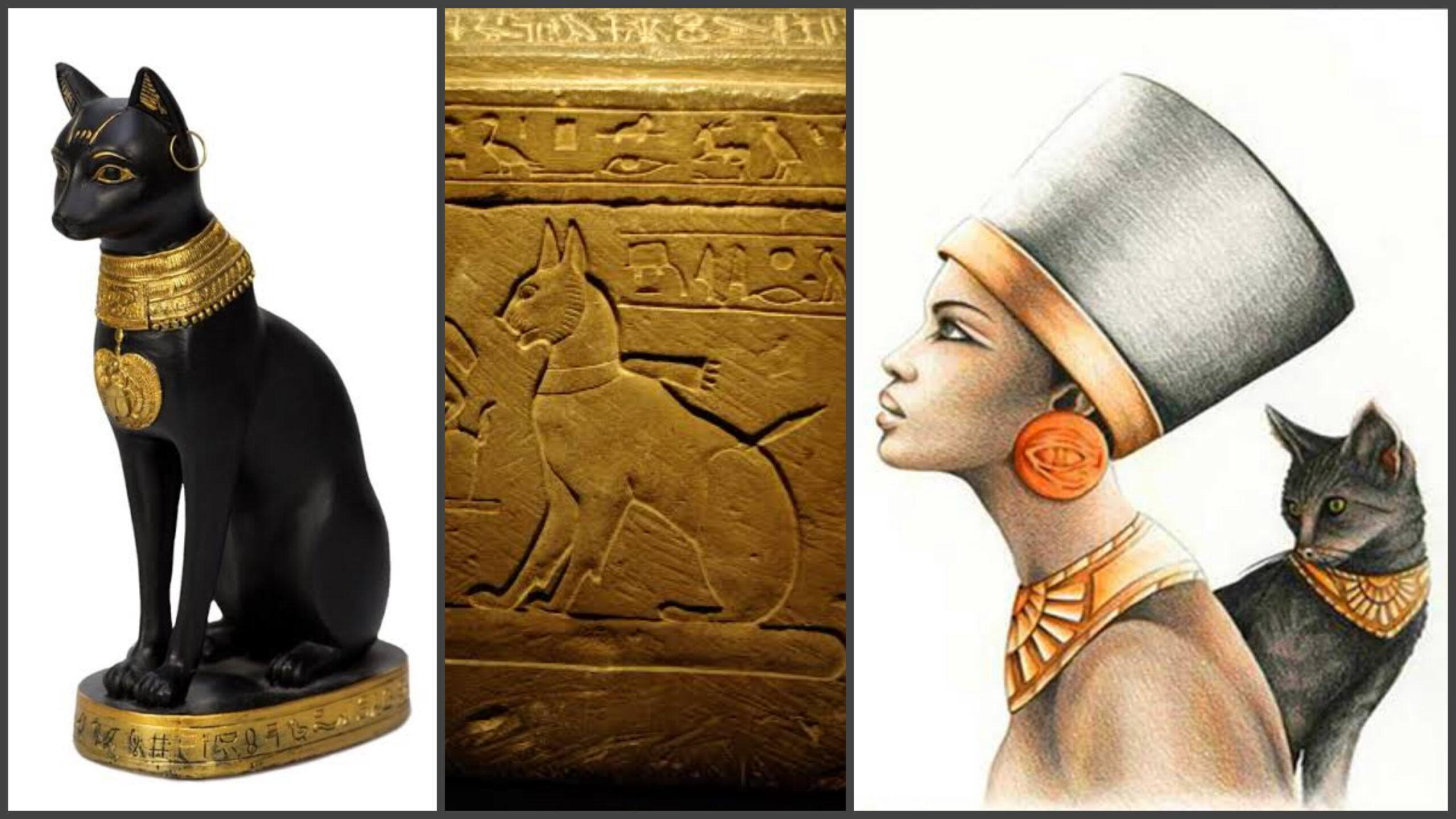 Ancient Egyptians held cats in the highest esteem for more than 3,000 years
