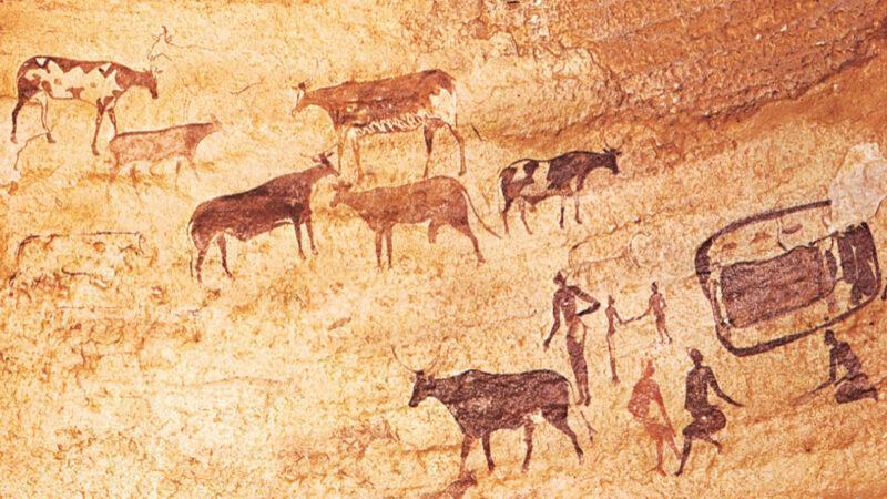 Africans cultivated crops 12,000 years ago, the first known advances in agriculture