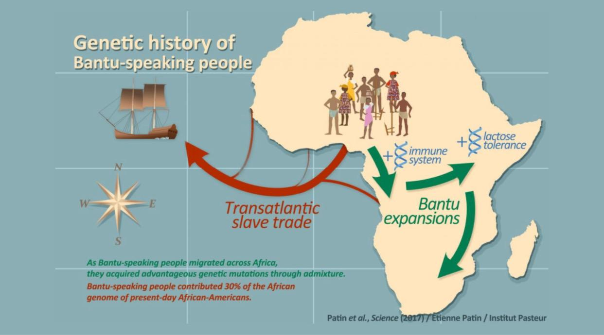 The migration history of Bantu speaking tribes  4,000 to 5,000 years ago