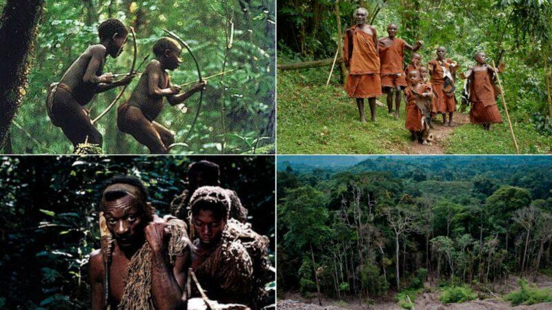 """Meet Mbuti tribe, shortest people in Africa. They call Forest """"Mother"""", it provide all their needs"""